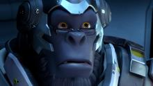 Winston's face after seeing salty player messages.