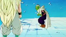 Due to having been trapped in the Hyperbolic Time Chamber with Gotenks, Piccolo is one of the only living members of the Dragon Gang left following Buu's destruction. Worse, the subsequent fight between Super Saiyan 3 Gotenks and Super Buu leaves the Lookout in shambles, causing Piccolo (or at least the Kami side of him) no small amount of grief.
