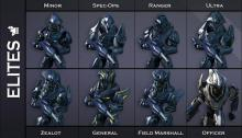 Halo: Reach gave you the ability to choose your class of elites