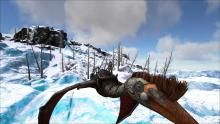 The Quetzal is useful for flying extremely quickly throughout the Ark, but it can also fly extremely slow when needed.