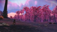 Here a player is running towards a forest of pink trees.