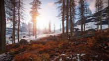 A snowy, forested hillside in game.