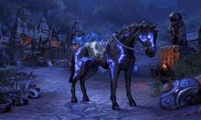 Tame mythical mounts