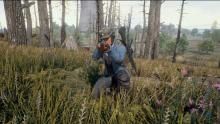 In PUBG, hiding in grass may be what keeps you alive.
