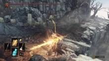 Using the dragons' greatest weakness to slay them