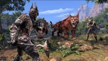Battle with a sabre cat