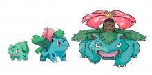 Ivysaur evolves from Bulbasaur and into Venusaur