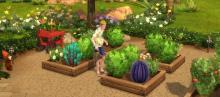 With enough fertilizer you can grow a beautiful garden.