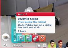 Sims aren't guaranteed to get along, not every Sim wants a brother or sister!