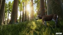 Enter a beautiful environment in Hunting Simulator