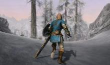 A character donning the Legend of Zelda gear.