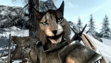 A Khajiit armed to the teeth (and claws) ready for battle.