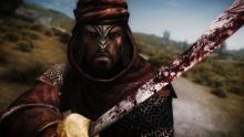 One of the many races you can be in Skyrim