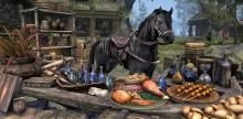 After ever siege take a moment to restock your supplies, repair equipment and do your daily mount upgrade.