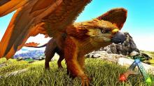 The Griffin is a great tame for players who are seeking to engage in pvp more often and looking to deal more damage than with the standard flying dinosaurs.