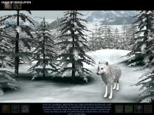 Save the White Wolf from the false accusations of being responsible for the accident surrounding lounge workers.