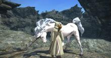 A mount that is exclusive to white mage.