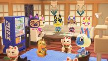 Chill with your villagers in a cat cafe.