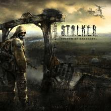 A first-person shooter survival horror developed by Ukrainian game developer GSC Game World and published by THQ in 2007 following a long development.