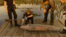 The gang checking out this large catch