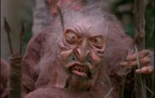 There are actually no trolls in Troll 2.