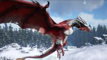 The Wyvern is definitely the most valuable and wanted flying mount by any player in Ark and can cause mayhem in multiplayer servers.