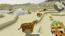 Tigers in the desert from ZAWA