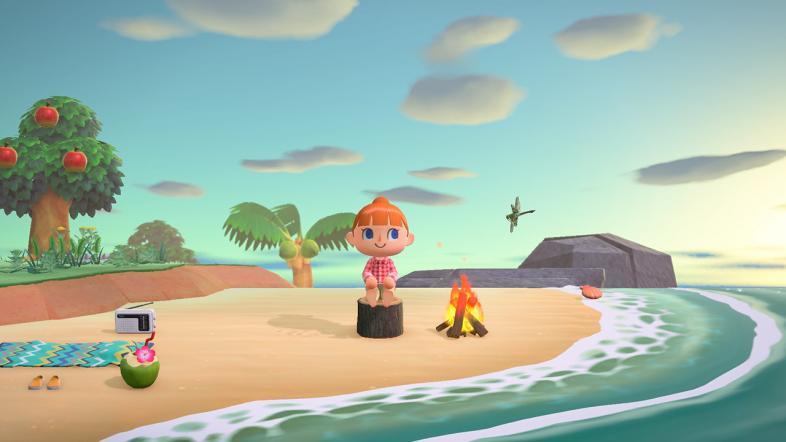 Animal Crossing New Horizons Best Islands