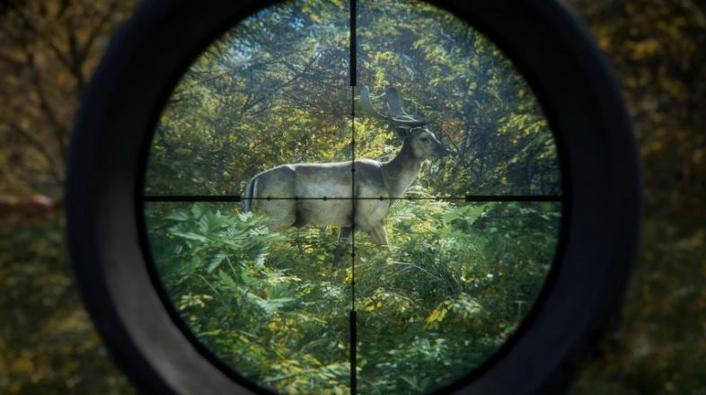 The 10 Best Hunting Games Ever Made | GAMERS DECIDE