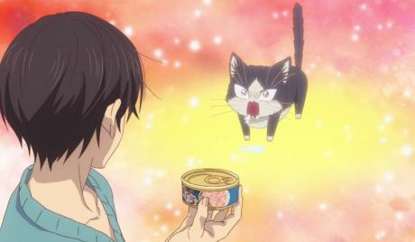 Anime with Cats