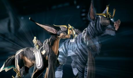 Best warframe companions 2019