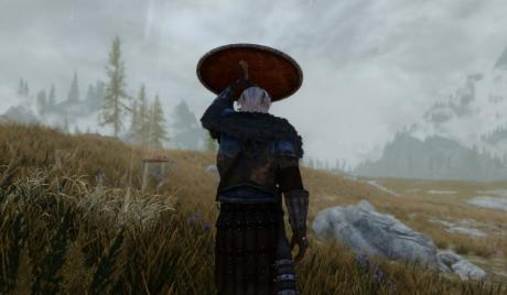 Skyrim Best Animation Mods