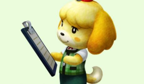 Animal Crossing New Leaf best ordinances