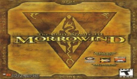The Elder Scrolls III Morrowind user rating and reviews